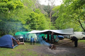 Campsite, 2011. Photo courtesy of Kylie Moroney.