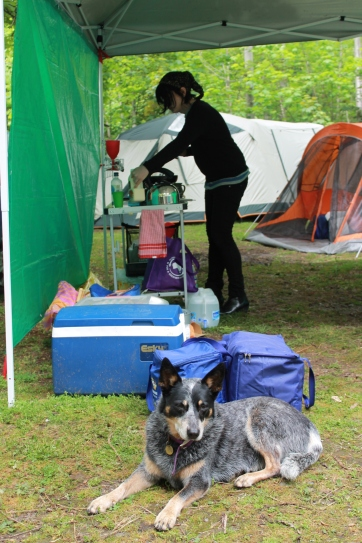 Jasper helps with the dishes, 2011. Photo courtesy of Kylie Moroney.